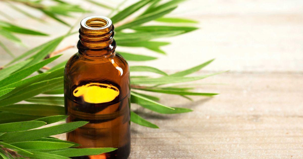 [5 óleos essenciais e suas vantagens para cada tipo de pele]